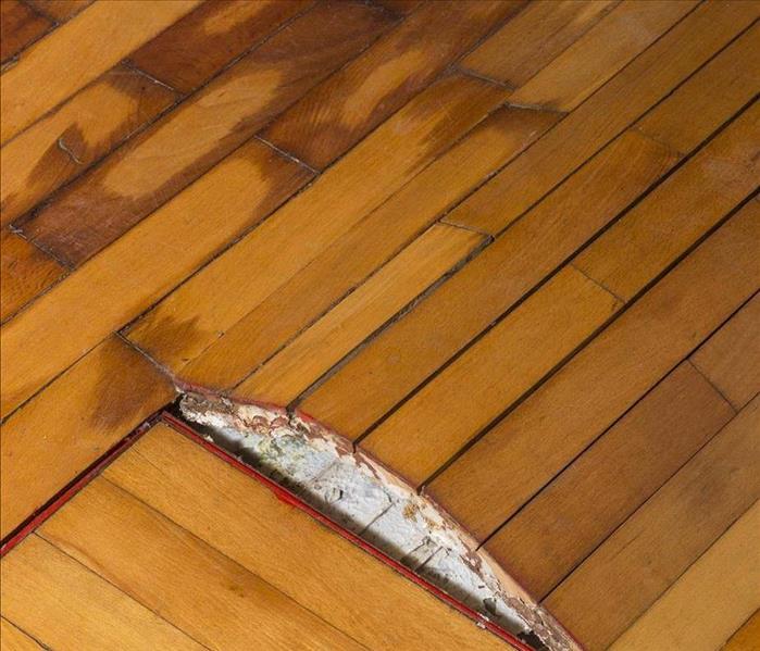 Mt Airy S Flood Damage Technicians Explain How Moisture