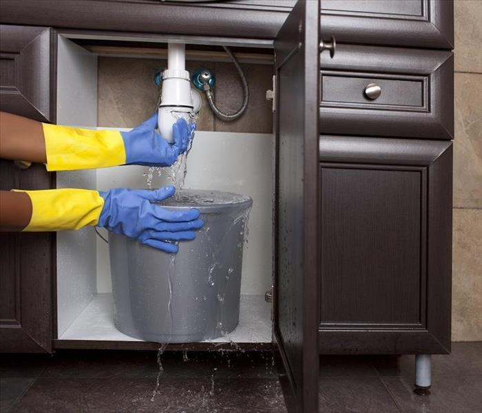 Mold Remediation Mold Damage from Sink Leak in Your Germantown Home