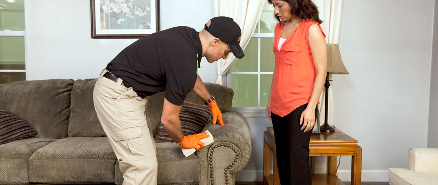 Manayunk, PA carpet upholstery cleaning