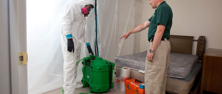 Manayunk, PA mold removal process